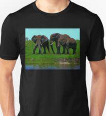 Elephants, Chobe National Park, Botswana Unisex T-Shirt
