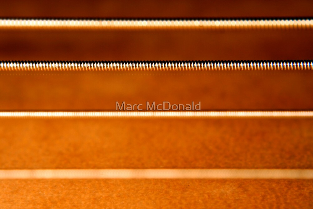 String Theory by Marc McDonald