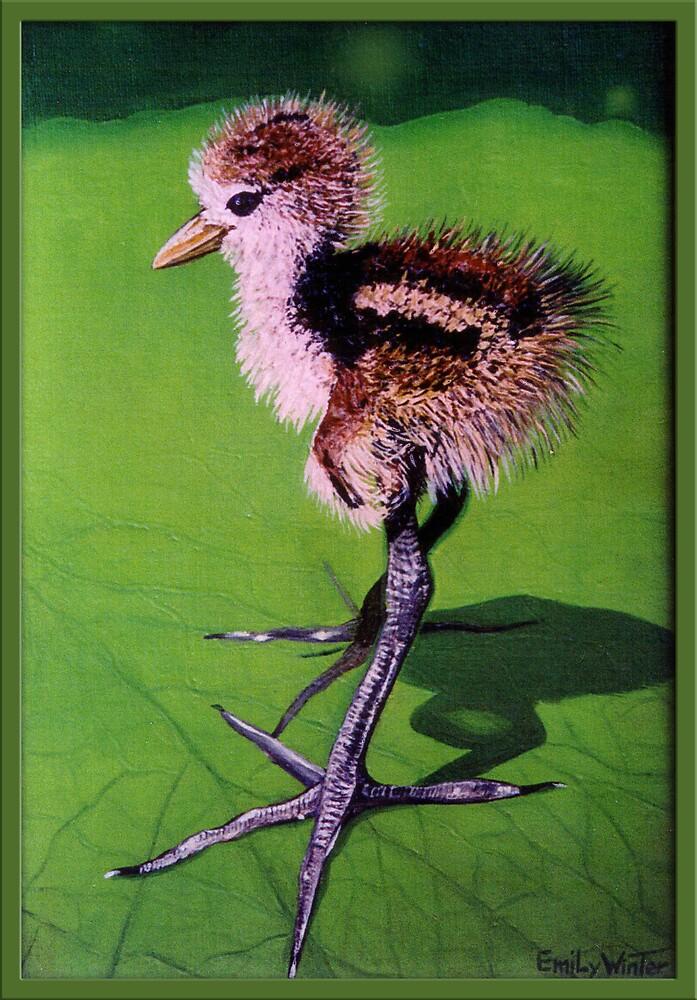 Lily Bird. by EmilyWinter