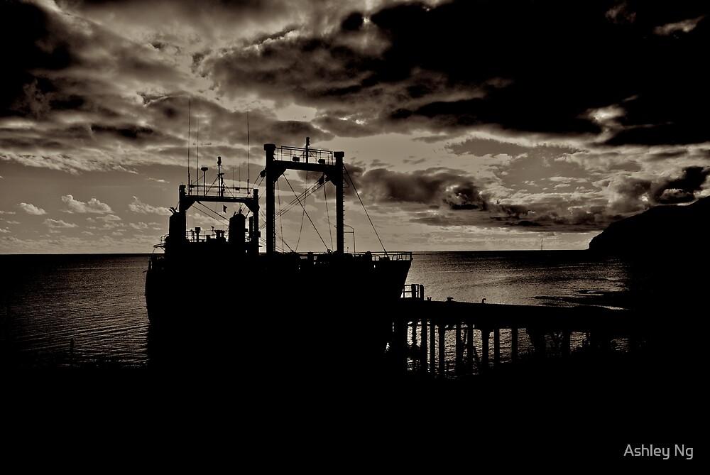 Island Trader by Ashley Ng
