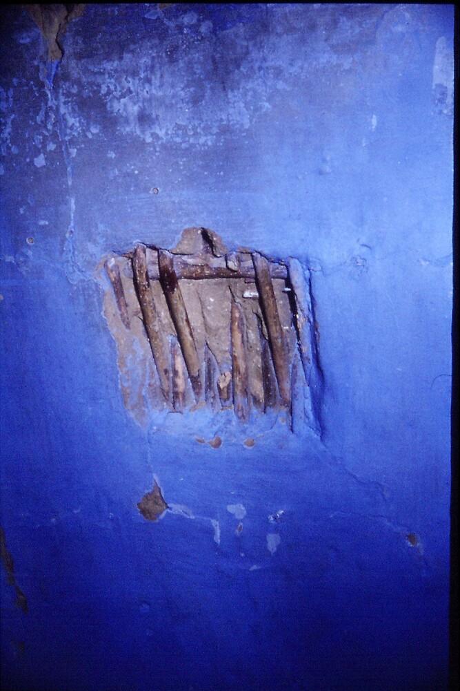 wattle-and-daub wall - Gelderland (Ned) by Daan Spijer