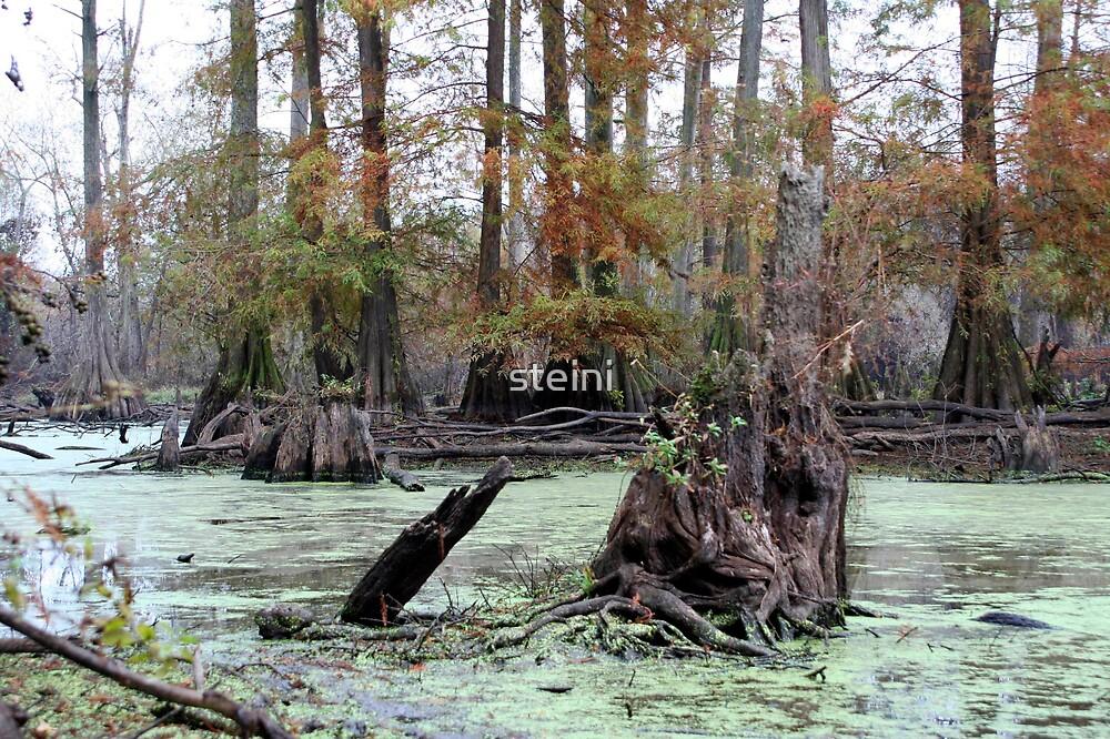 Louisiana by steini