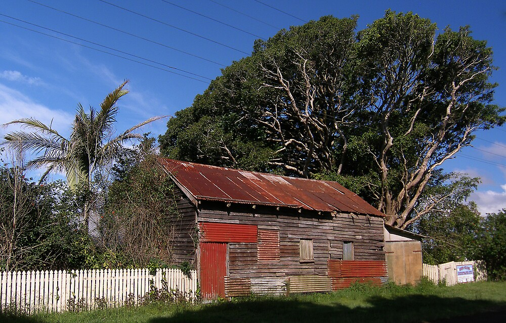 Old Tin Shed by David James