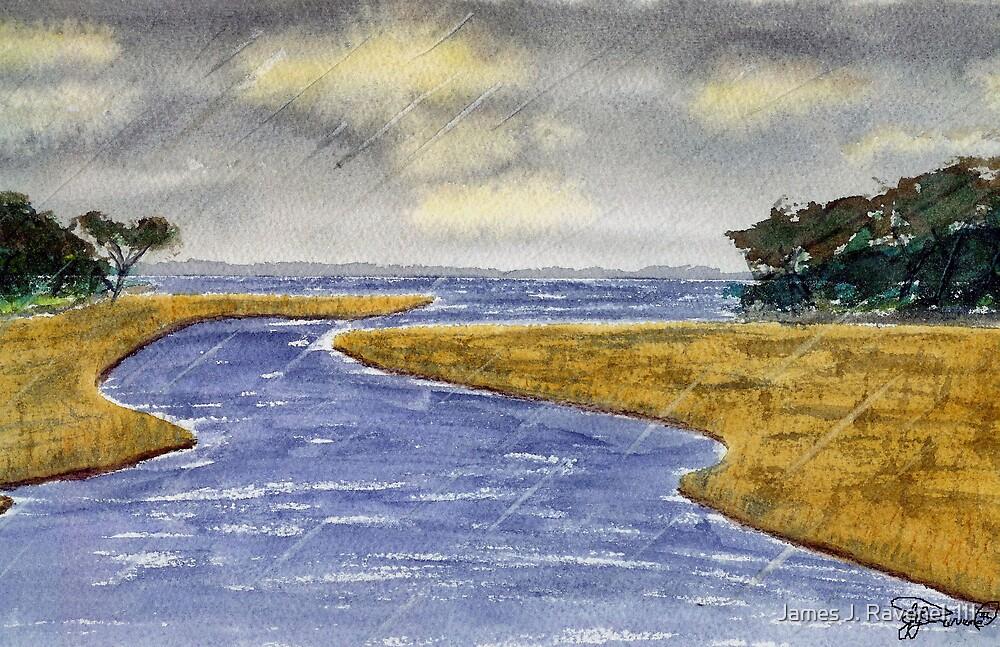 Rain On The Marsh by James J. Ravenel, III