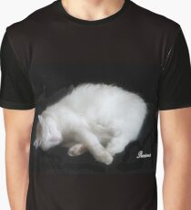 PRECIOUS, ,,MY BEAUTIFUL RESCUED KITTY f..FUNNY SUNDAY....KITTY VIDEO Graphic T-Shirt