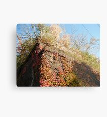 Sixth Street Embankment, Abandoned Pennsylvania Railroad Embankment , Jersey City, New Jersey  Metal Print