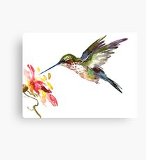 Flying Hummingbird and Flower Canvas Print