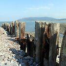 Porlock Weir Beach by trish725