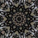 Stones & Rocks of Pele! by Lisa Hildwine