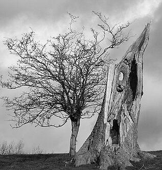 Langollenn Dinas Bran by MrMarples