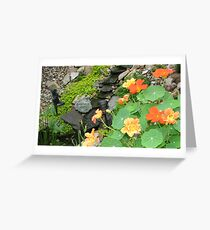 Pond Garden Greeting Card