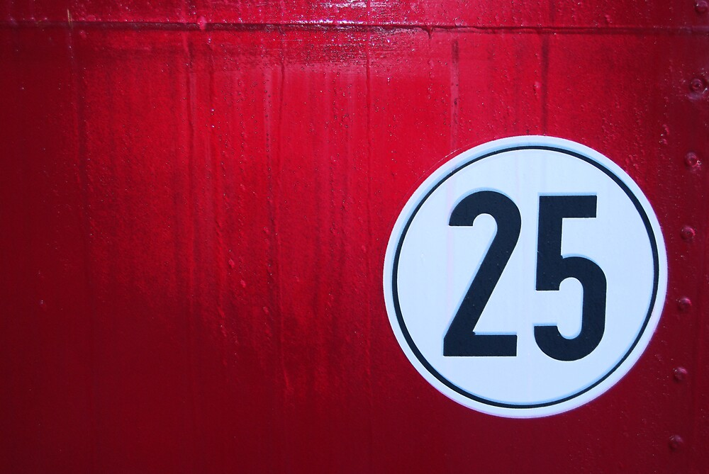 25 by Vicent Alcaraz Coll