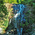 Tristiana Falls by Penny Smith