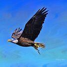 Eagle Series Success by Deborah  Benoit