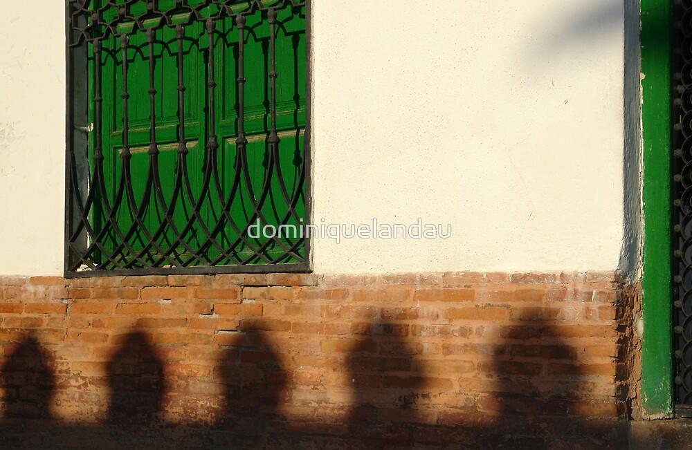 green window by dominiquelandau