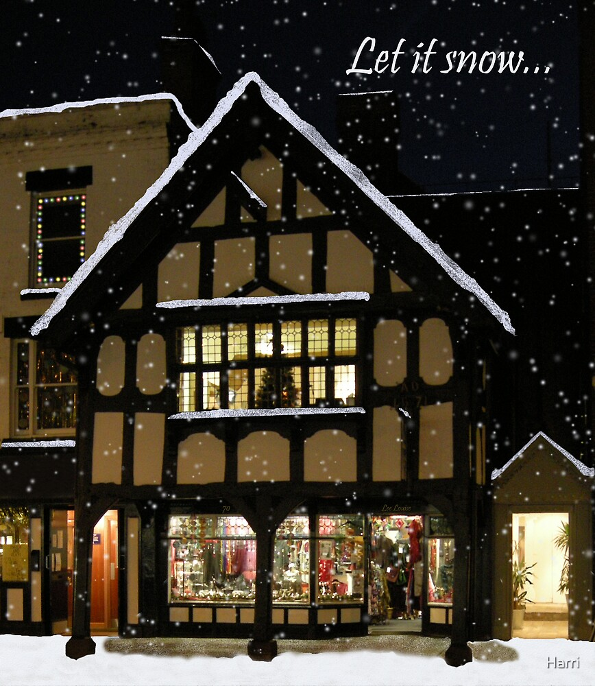Let it snow by Harri