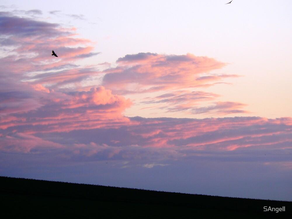 Folding Cloud by SAngell