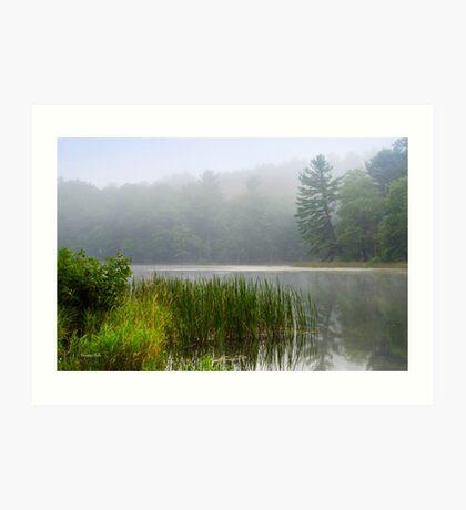 Foggy Sunrise Landscape Art Print