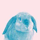 Rabbit 04 von froileinjuno
