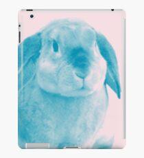 Rabbit 04 iPad-Hülle & Skin