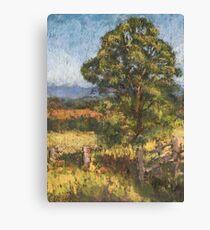 Beechwood - plein air Canvas Print