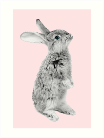 Rabbit 08 von froileinjuno