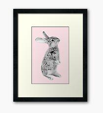 Rabbit 08 Gerahmtes Wandbild