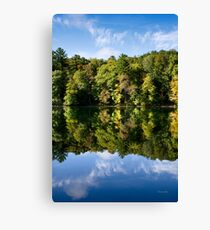 Reflection Landscape Canvas Print