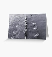 Rowing Greeting Card Sorry & Miscellaneous