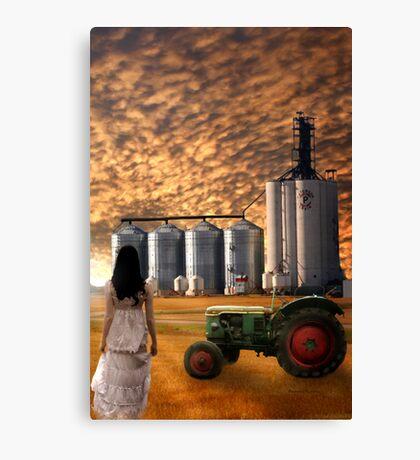 PRAIRE SKY Canvas Print