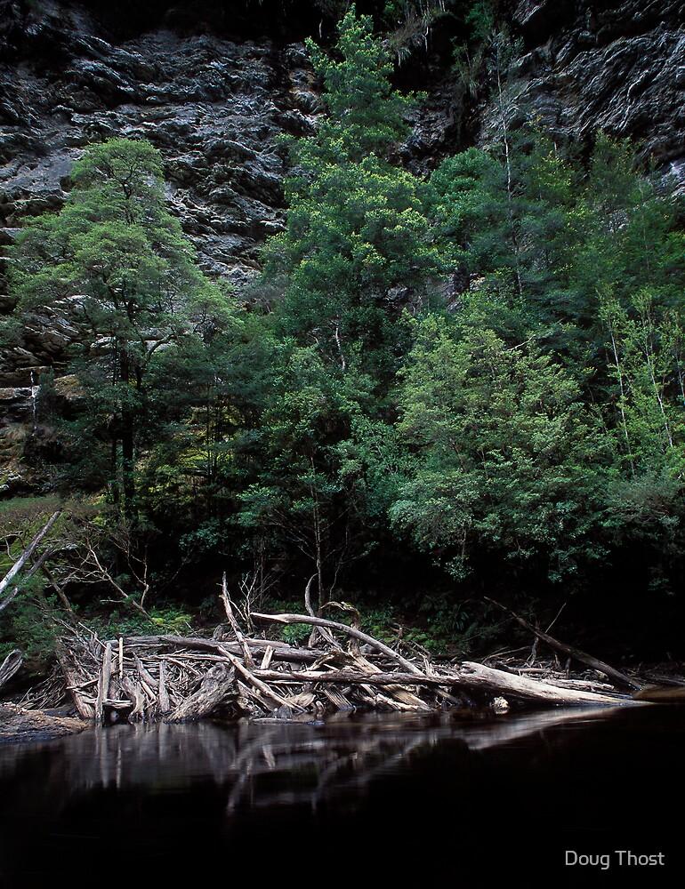 Log Jam, Franklin River by Doug Thost