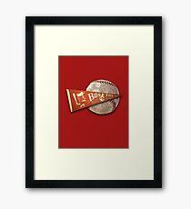 boston baseball Framed Print
