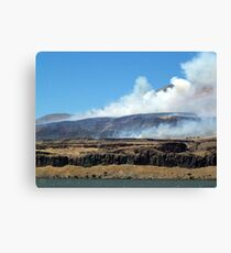 Wildfire! Canvas Print