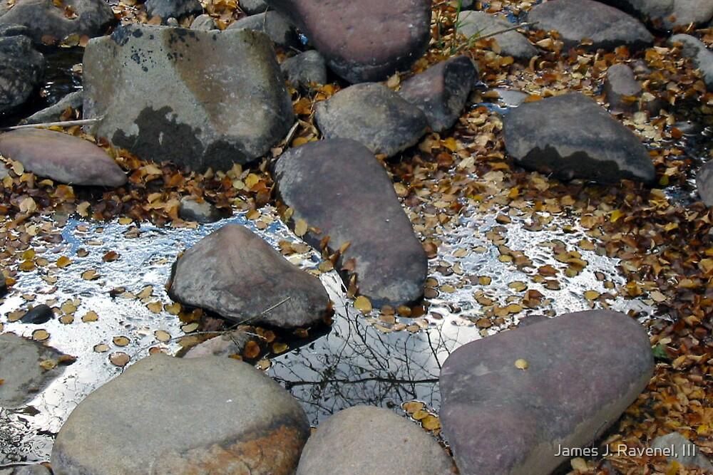 River Rocks by James J. Ravenel, III
