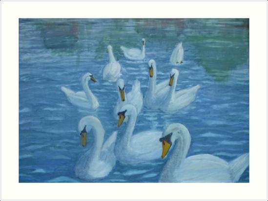 River Nene Swans by Peter Lythgoe