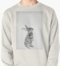 Rabbit 11 Sweatshirt