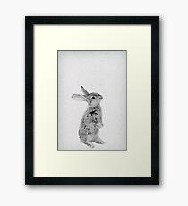 Rabbit 11 Gerahmtes Wandbild