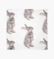 Rabbit 12 Tuch