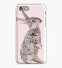 Rabbit 12 iPhone Case/Skin