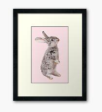 Rabbit 12 Gerahmtes Wandbild