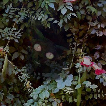 Peekaboo!  by ELeggett