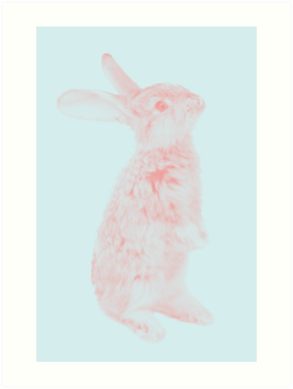 Rabbit 07 von froileinjuno