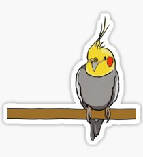 Cute cockatiel for bird lovers Sticker