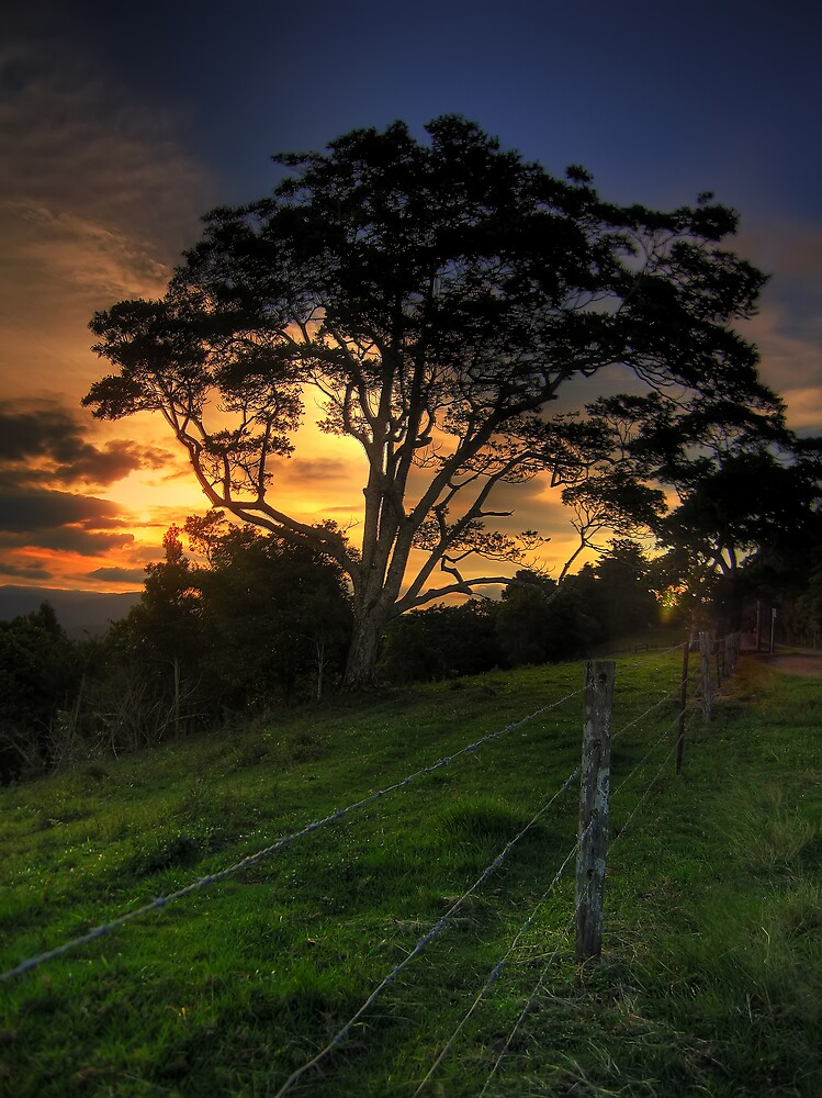 Sunset in Montville, Queensland by David James