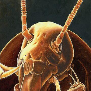 The Roach by fkneedles
