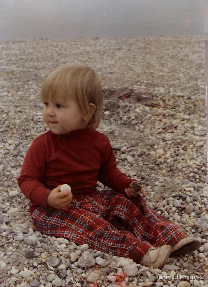 Finding Rocks on the Beach by Janet Ellen Lusk