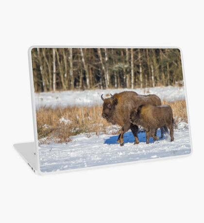 Bison Bonasus Laptop Skin