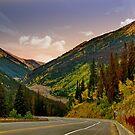 Trail Ridge Road-Colorado by Nancy Richard
