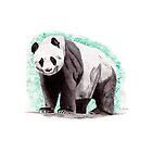 Panda by Luke Tomlinson
