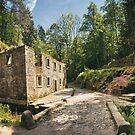 Dolsky Mill by Dominika Aniola